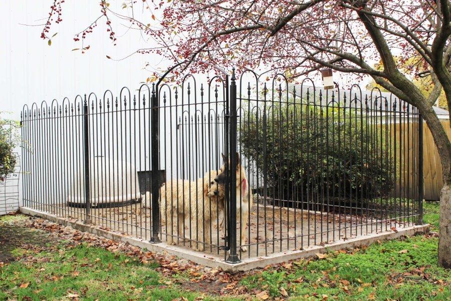 Iron fence chicago